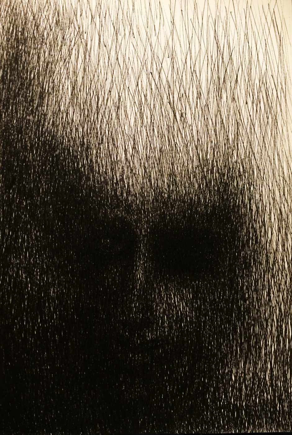 06_Schatten